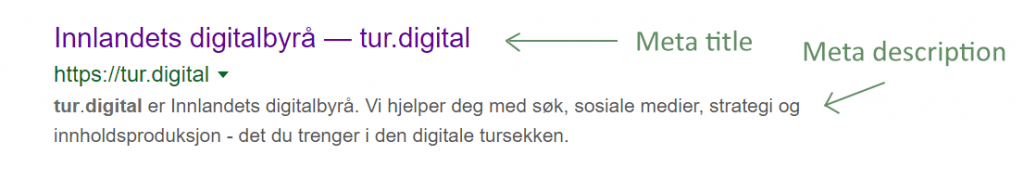 Eksempe på Meta title og meta description i Google